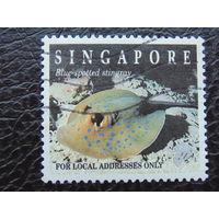Сингапур. Морская фауна.