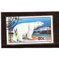 Монголия.Ми-2035. Белый медведь. 1989.