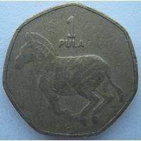 Ботсвана 1 пула 2007 г. (m)