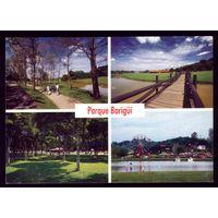 Бразилия Куритиба Парк