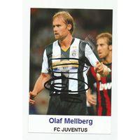 Olaf Mellberg(Juventus, Италия). Живой автограф на фотографии.