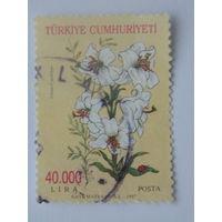 Турция 1997г. Флора.