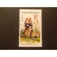 Чехия 2011 фауна