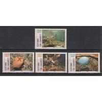 Турецкий Кипр Морская фауна 2002 год чистая полная серия из 4-х марок