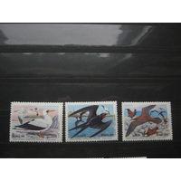 Марки - Бразилия фауна птицы 1985