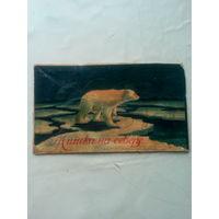 "Картинка с коробки конфет ""Мишка на севере"" СССР"