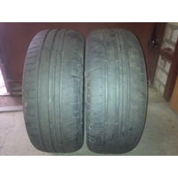 Шины летние Goodyear Efficient Grip Performance 195/55 R15 (пара)