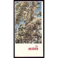 1968 год А.Ананьина Май 3