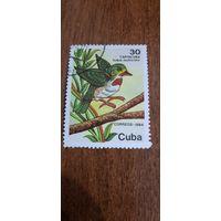 Куба 1984. Птицы. Todus multicolor.  Марка из серии