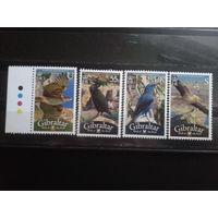 Гибралтар 2008 птицы** Михель-4,9 евро