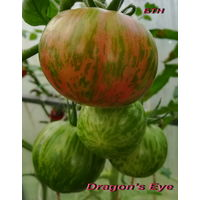 Семена томата Глаз Дракона (Dragon s Eye)