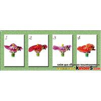 Цветочные феечки 2016 (Die kleinen Blumenfeen) - SD160- розовая
