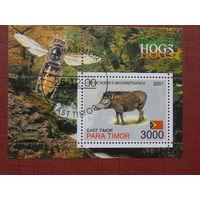 Восточный Тимор 2001г. Фауна-4