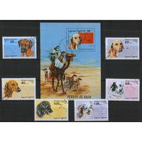 Собаки (6м+блок) Сахара