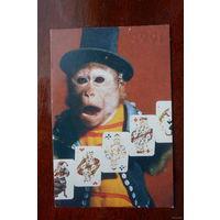 Календарик с обезьяной 1991 г.