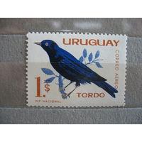 Уругвай.  Птичка.  1962 г.