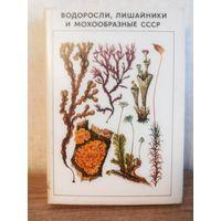 Книга Водоросли, лишайники и мохообразные СССР