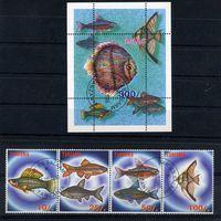 Танзания 1998г. аквариумные рыбки, 4м. 1 блок
