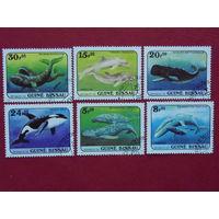 Гвинея-Бисау 1984г. Морская фауна.