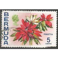 Бермуды. Молочай красивейший. 1970г. Mi#248.