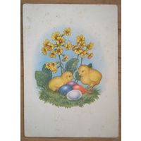 Пасхальная открытка. Цыплята. Германия. 1950-60-е. Чистая.