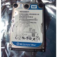 Винчестер ноутбучный 250Гб SATA . Не определяется .