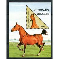 Бенин - 1997 - Лошади - [Mi. bl. 27] - 1 блок. MNH.