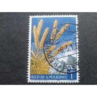 Сан-Марино 1958 пшеница