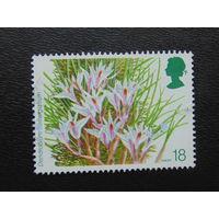 Англия 1993г. Цветы.