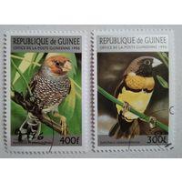 Гвинея 1996. Птицы