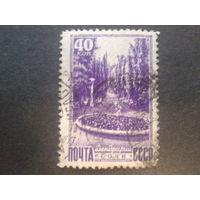 СССР 1949 Сочи, дендрарий
