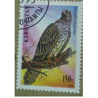 1995 Кыргызстан (Киргизия) хищные птицы фауна
