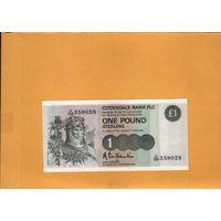 Шотландия 1 фунт 1987 г.  унс