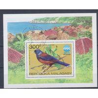 [2063] Мадагаскар 1975. Фауна.Птица. Гашеный блок.