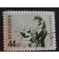 Болгария 1957 г. Фауна.