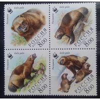 Росомаха. Выпуск по программе WWF, Россия, 2004 год, сцепка из 4 марок