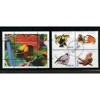 Танзания 1998г. попугаи, 4м. 1 блок