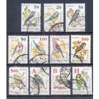 Беларусь стандарт птицы фауна