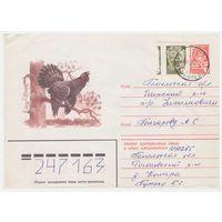 ХМК СССР, прошедший почту. Глухарь