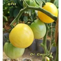 Семена томата  Dr.Carolyne Cherry