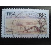 ЮАР 1989 вельд