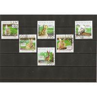 Гвинея 2010 Кролики полная серия 6 марок
