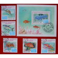 Мадагаскар. Рыбы ( Блок и 5 марок ) 1982 года.