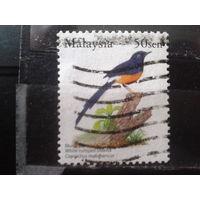 Малайзия 2005 Стандарт, птица