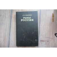 Книга -  Рыбы России