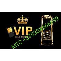 Золотой номер МТС +375333666699