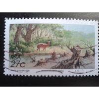 ЮАР 1992 лес, антилопа