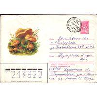 1979 год ХМК Лисички 79-484