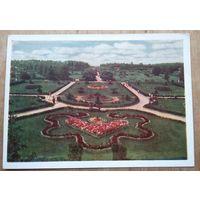 Минск. Ботанический сад. 1959 г. Чистая.