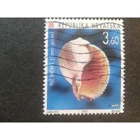 Хорватия 1997 моллюск